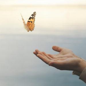 quantum-techniques-profound-love-healing-code