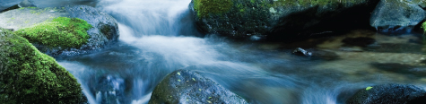 quantum-techniques-faq-tech-support-rocks-with-moss-in-river